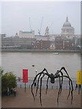 TQ3180 : Thames with Bourgeois spider by Slbs