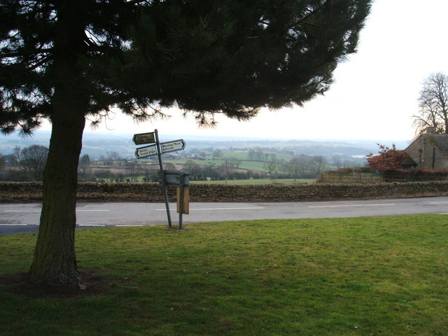 Signposts, green and conifer