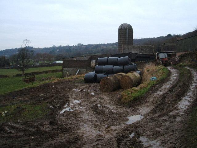 Edges Farm