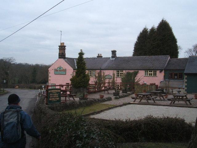 Pink Pub