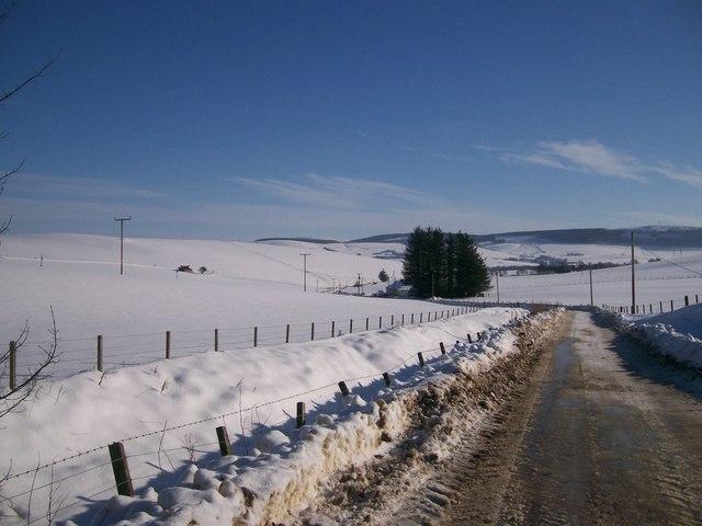 Snow at Brawlandknowes