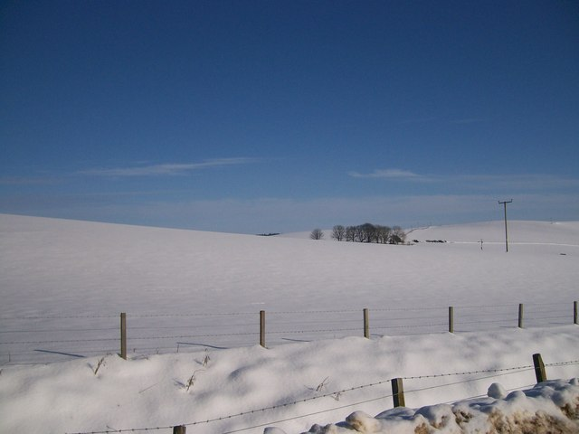 Brawlandknowes in the snow