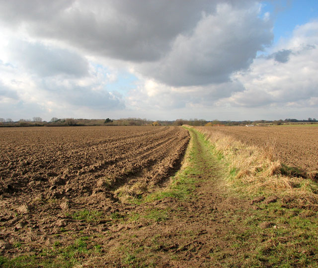 Path following a field boundary