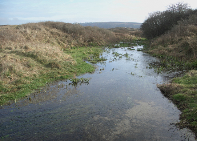 Duneland stream in the south of Merthyr Mawr Warren (looking south east)
