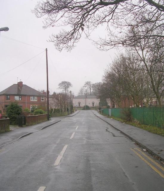 The Avenue - Ledger Lane