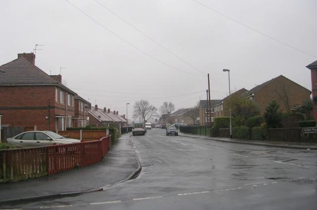 Ledger Place - The Avenue