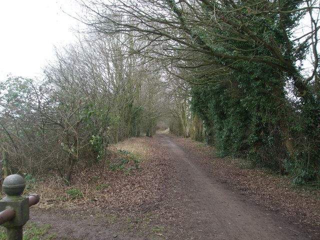 Trackbed/footpath looking towards Norwich