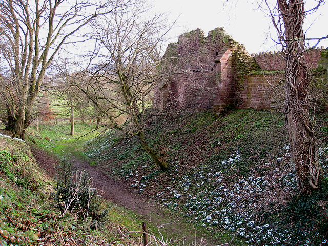 Snowdrop time at Wilton Castle