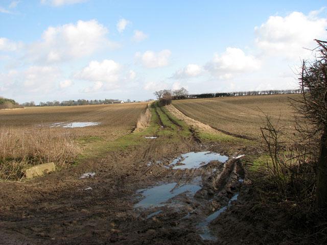 Track across fields