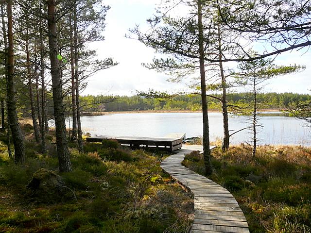 Loch Saine