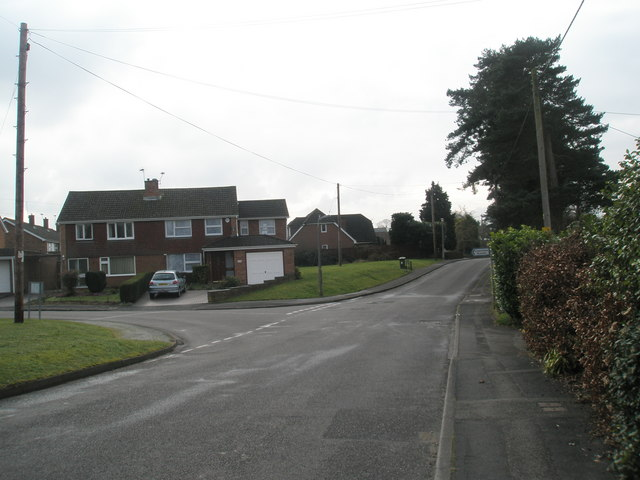 Looking southwards down Woodley Lane