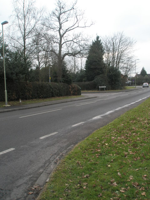 Looking towards the junction of Cedar Lawn and Braishfield Road