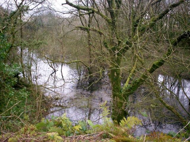Flooded Disused Quarry, Trenewydd Lane, Llanteg