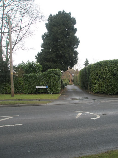 Looking across the Winchester Road and into Windfield Drive