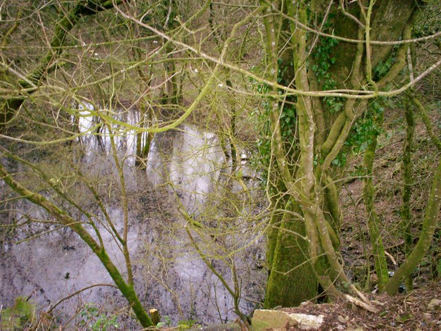 Flooded Disused Quarry, Trenewydd Lane, Llanteg