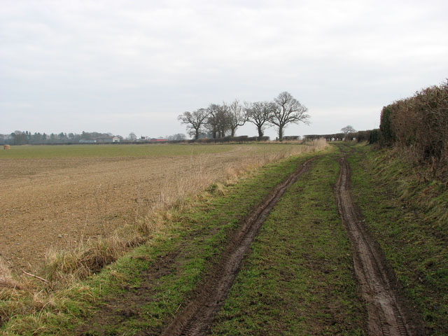 Track to the B1150 (North Walsham Road)