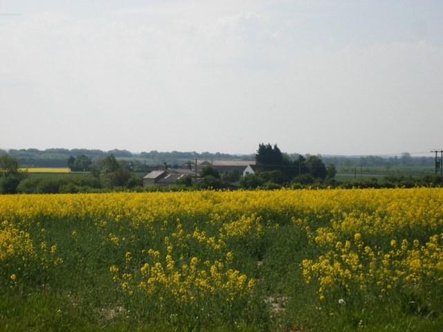 Lark Hall Farm and Breach Farm