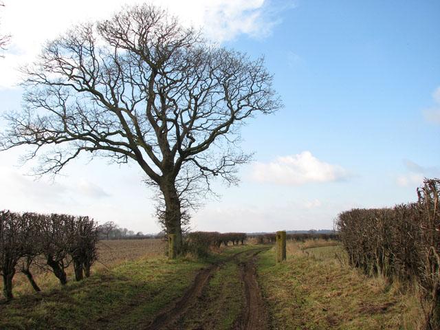 Farm track to Potspoon Hole