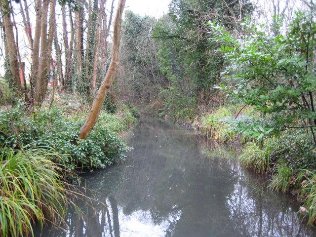 Hogsmill River in Ewell