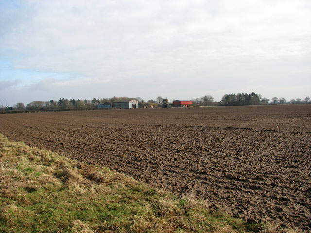 Cultivated field adjoining farm track