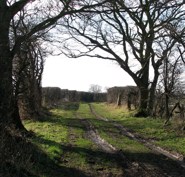 Farm track to Potspoon Hole