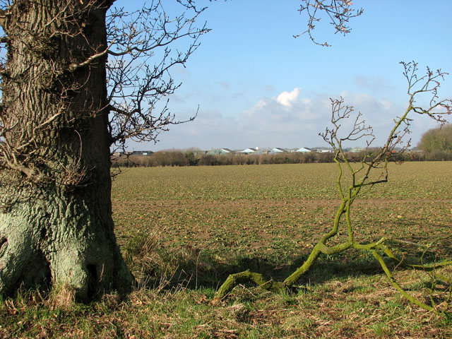 View towards the former RAF Coltishall airfield