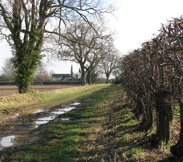 Farm track to the B1150 (North Walsham Road)