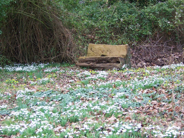 Seat, Homington