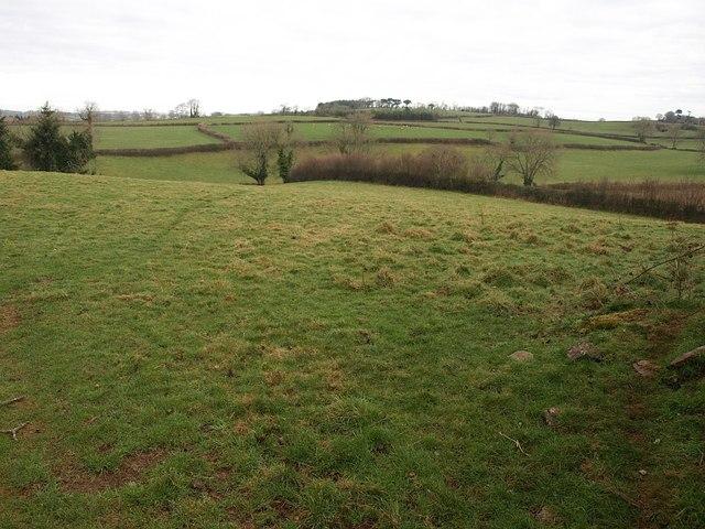 Countryside near Waddeton