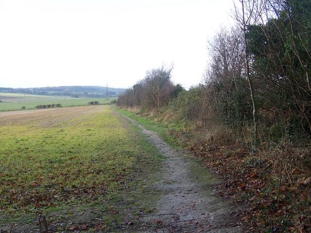 Field path, Harnham