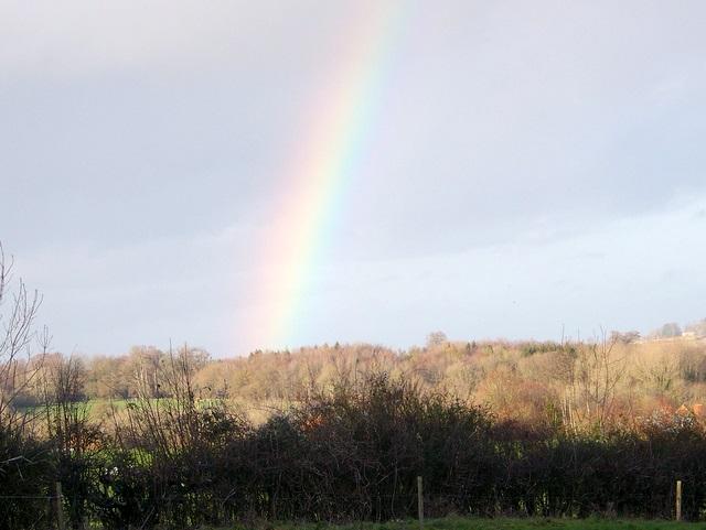 Rainbow near Bodenham