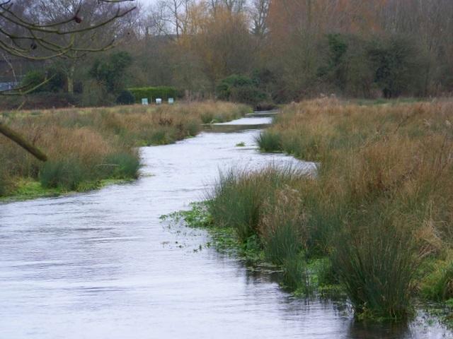 The Pilhill Brook, Abbotts Ann