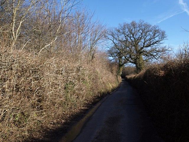 Lane to Gappah