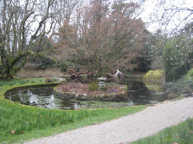Pond in Trewidden Garden