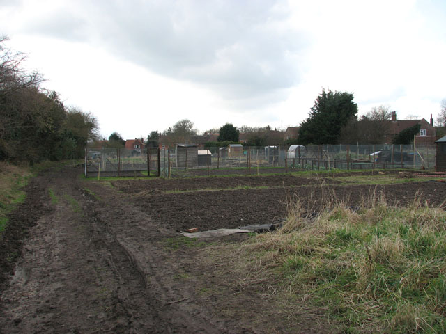 Track traversing allotment gardens