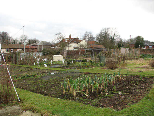 Allotments in February