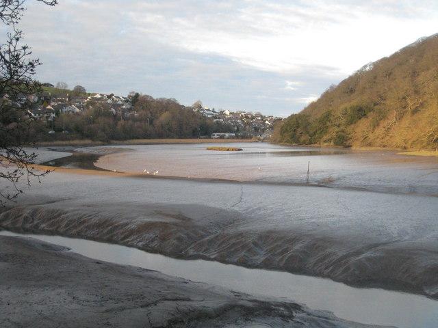 Tidal mud flats on the Tresillian River