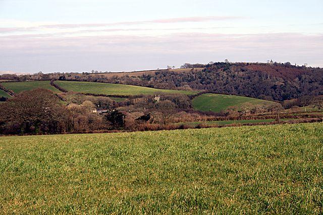 Grassland near Coombe