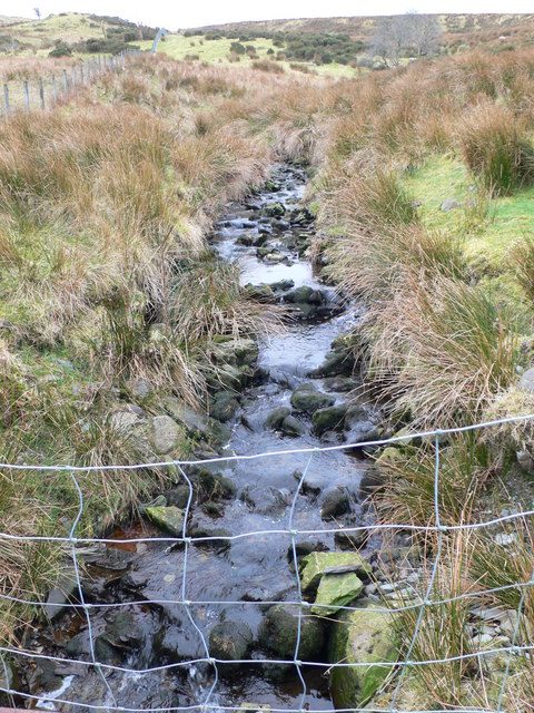 Stream on Moel Gopyn