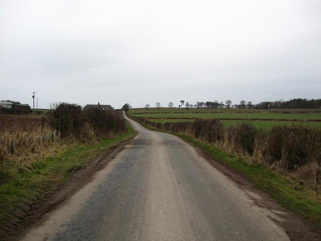 Road running past Brownrigg Farm
