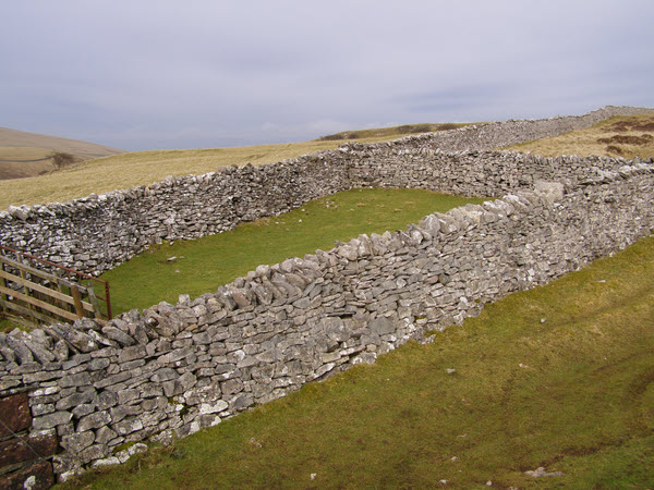 Sheepfold close to the C to C path