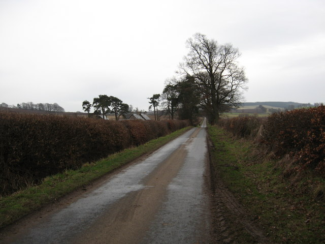 Minor road passing through rich farmlands.