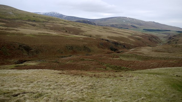 View down the valley of the Shank Burn