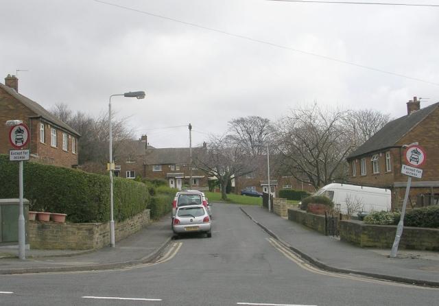 Squire Green - Squire Lane