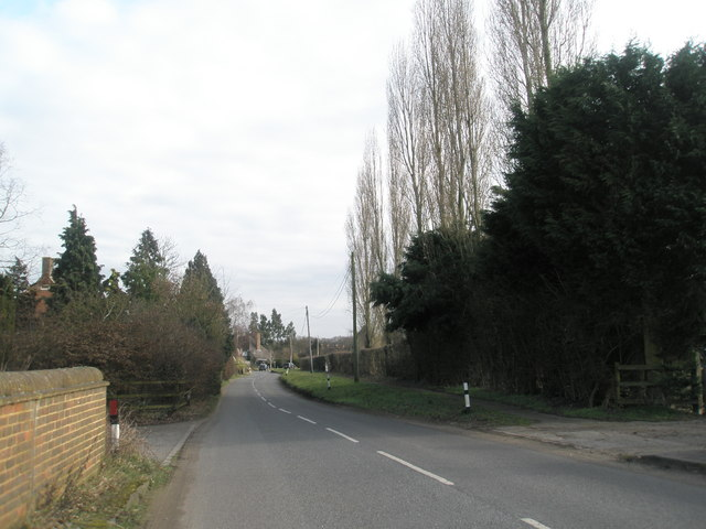 Looking eastwards along Wisley Lane