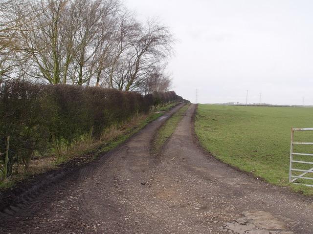 Lane to Trashy Hill
