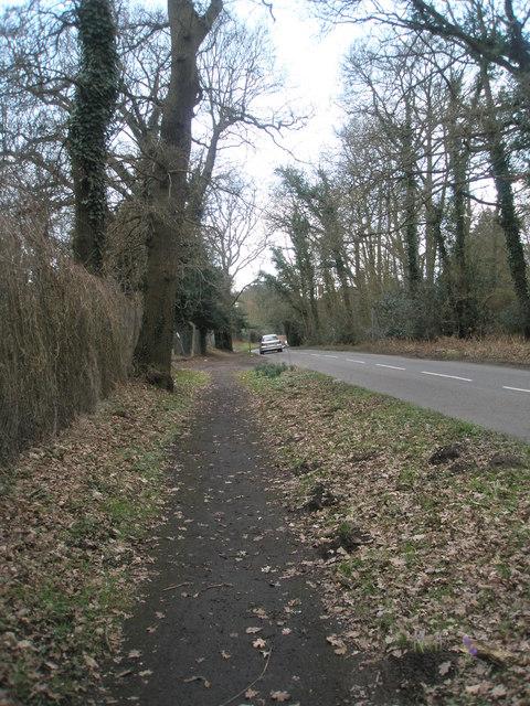 Wisley Lane