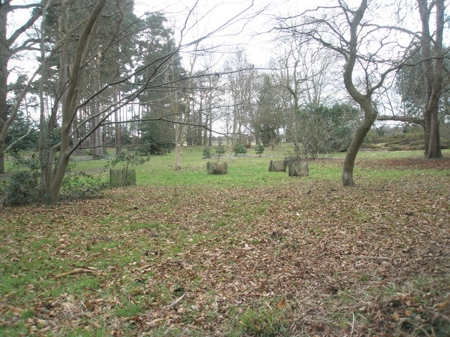 RHS Heather Garden as seen from Wisley Lane