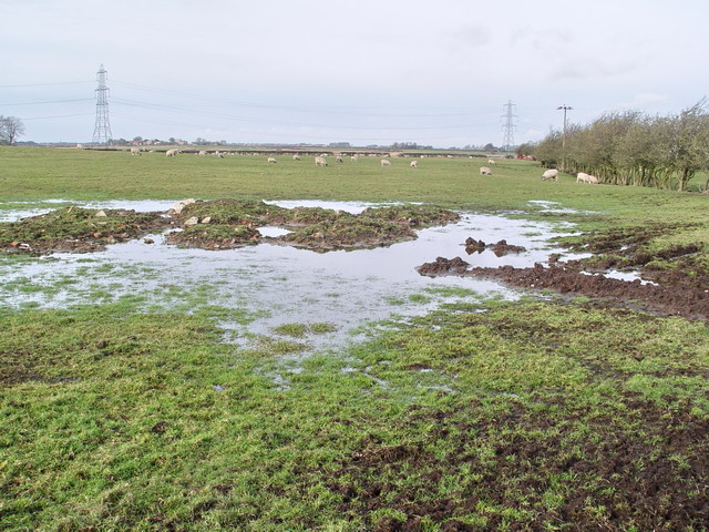 Waterlogged Field Near Eskham House