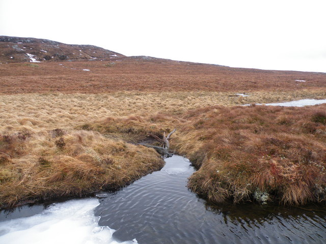 Bog Oak Surfacing on Meall Fuar-mhonaidh Moorland